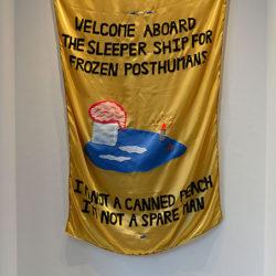 Sleeper Ship, 2015