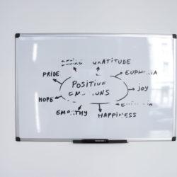 Le centre des Organisations positives