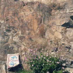 Վիշապագորգ