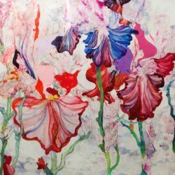 L'arbre Iris