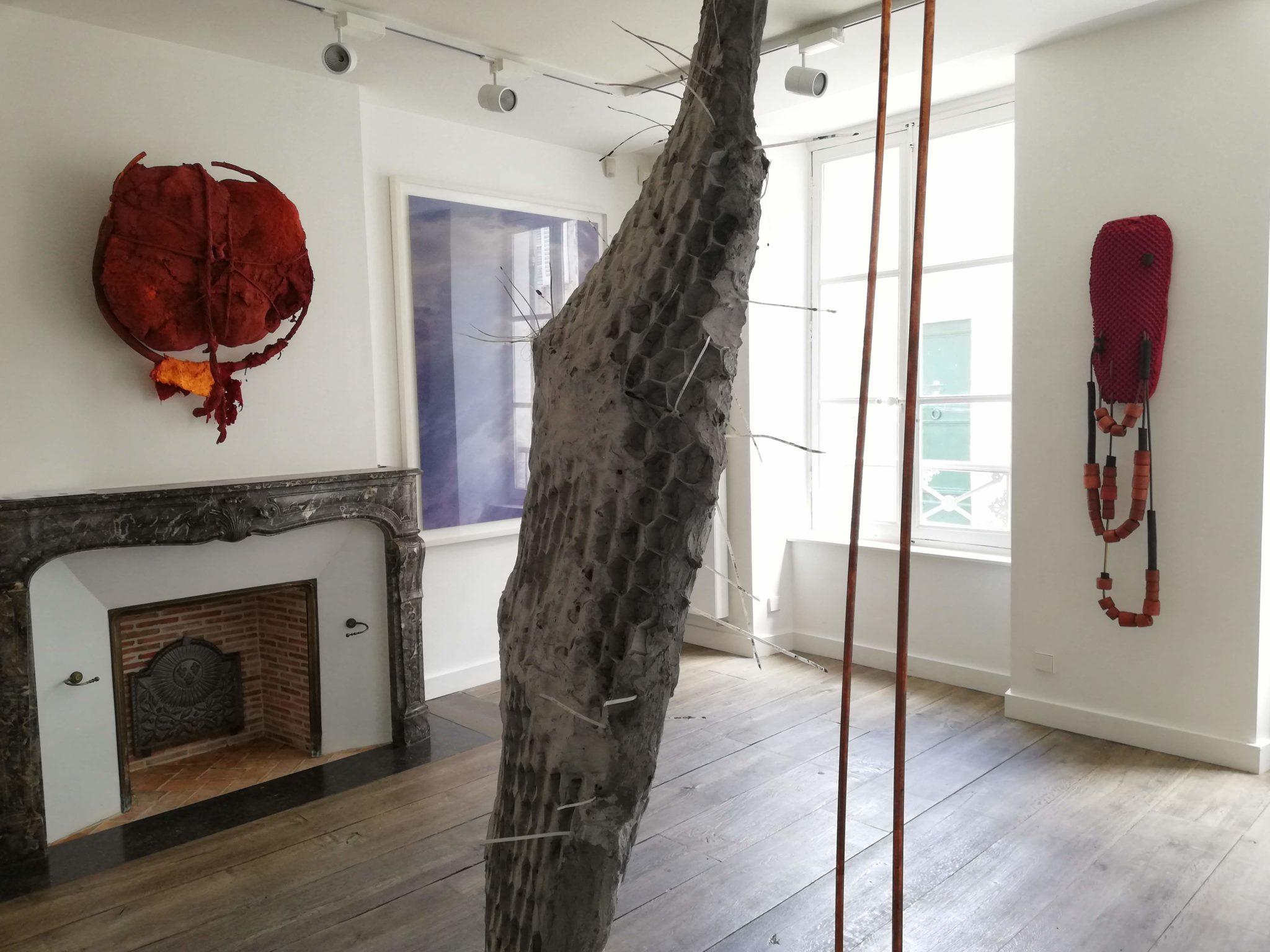 5 oeuvres d'Amandine Arcelli à la Fondation Francès